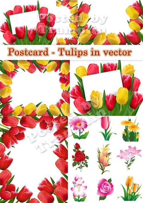К празднику 8 марта Тюльпаны - Цветы в векторе