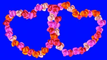 Свадебный футаж на хромакее - Сердца из роз