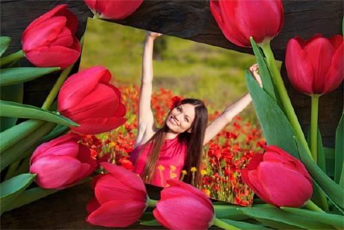 Рамка для фотомонтажа - Весенние цветы