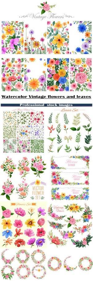 Акварельные винтажные цветы и листья