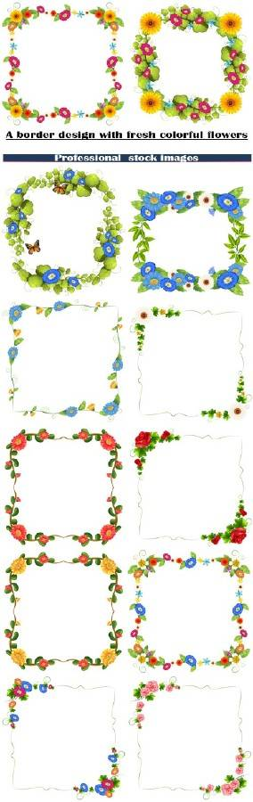 Рамки со свежими разноцветными цветами