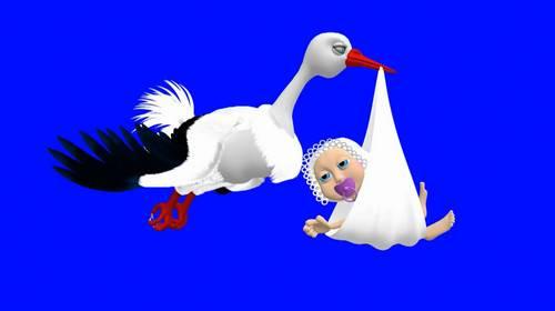 Футаж на хромакее - Аист несет ребенка