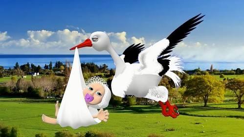 Детский футаж - Аист несет младенца