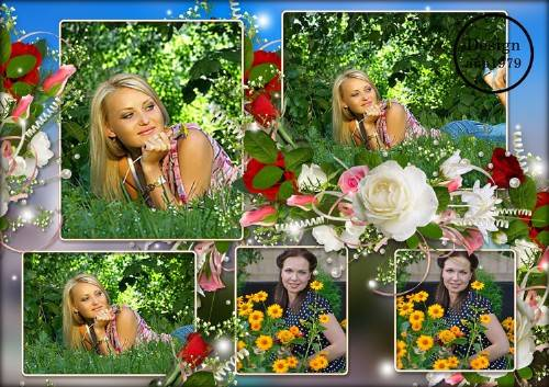Рамка для фотошопа – Белая роза