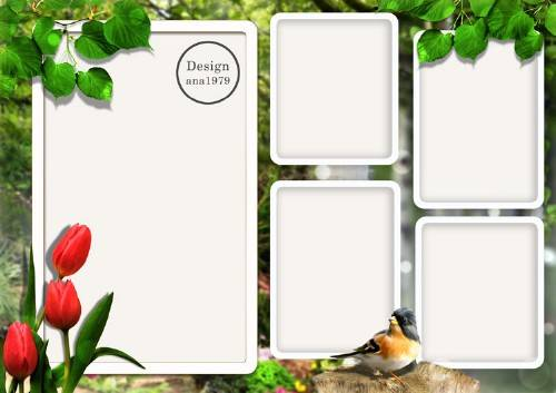 Рамка для фотошопа – Тюльпаны и птичка