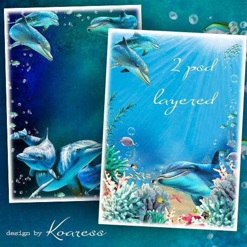 Два многослойных исходника с дельфинами для морских фоторамок и коллажей