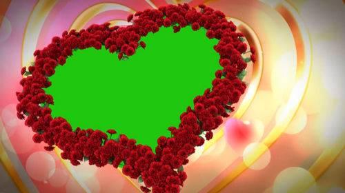 Футаж на хромакее - Сердце из красных роз