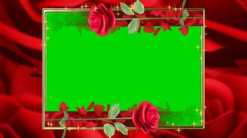 Футаж с красными розами на хромакее