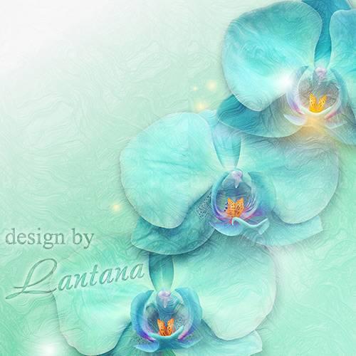 PSD исходник - Голубые орхидеи