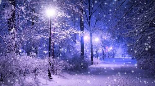 Футаж - Зимний вечер в парке