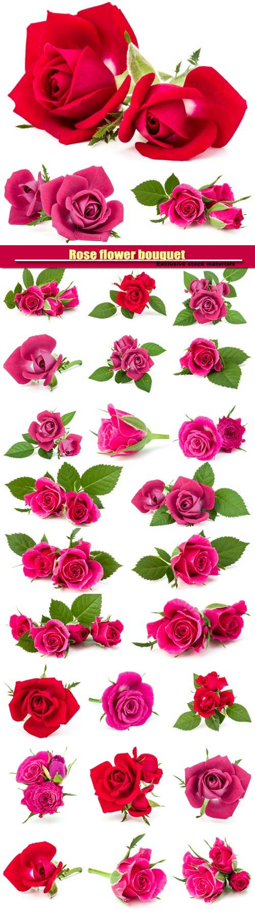 Rose flower bouquet isolated on white background