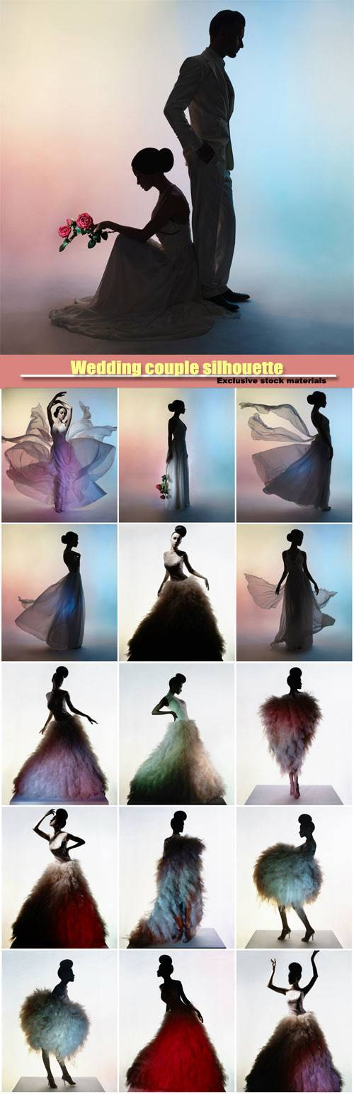 Wedding couple silhouette, groom and bride, beautiful elegant woman in luxu ...