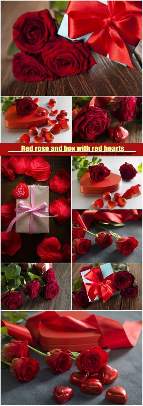 Red rose and box with red hearts