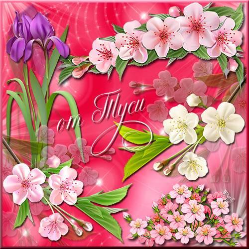Клипарт - Весенние цветы