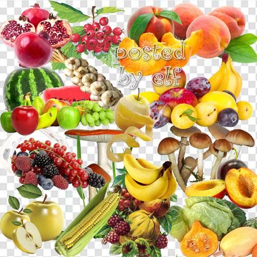 Ягоды, фрукты, овощи, грибы – PNG клипарт