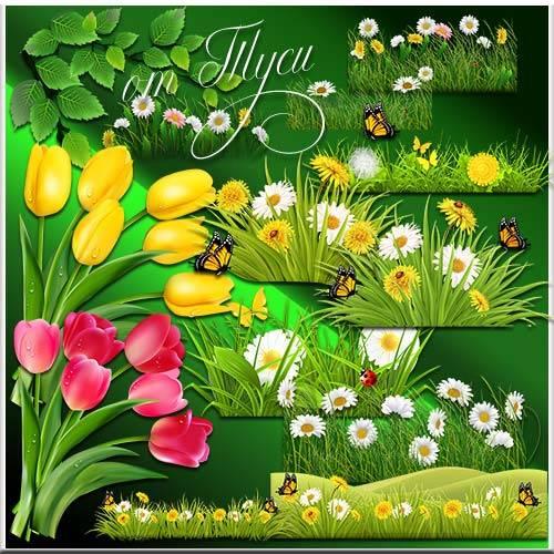 Цветы, бабочки, трава - Клипарт