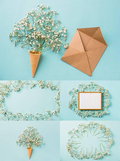 Белые цветы на голубом фоне / White flowers on a blue background