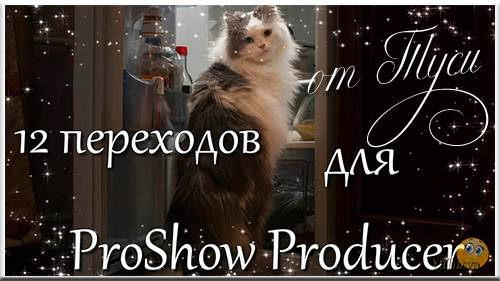 12 переходов для ProShow Producer - Звёзды / 12 transitions for ProShow Pro ...