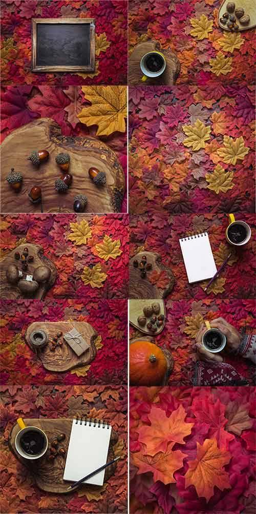 Краски осени -2 - Растровый клипарт / Autumn colors 2 - Raster clipart