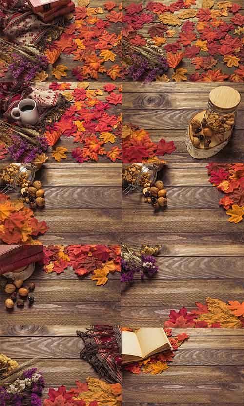Краски осени -4 - Растровый клипарт / Autumn colors - 4 - Raster clipart