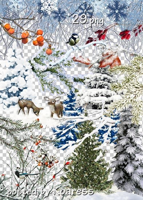 Клипарт png без фона для дизайна - Зимние деревья, кусты, ветки и другие эл ...