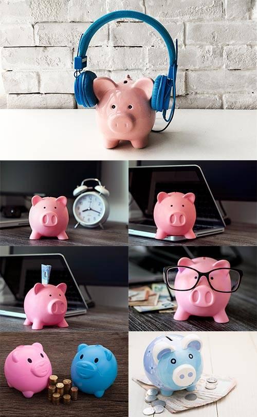 Свинья - Символ 2019 года - Клипарт / Pig - Symbol of 2019 - Clipart