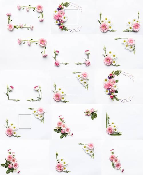 Красивые цветы на белом фоне - Растровый клипарт / Beautiful flowers on whi ...