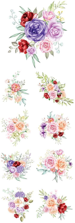 Розы в векторе / Roses in vector