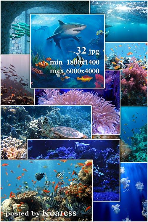 Морские растровые фоны для дизайна - Marine raster backgrounds  for design