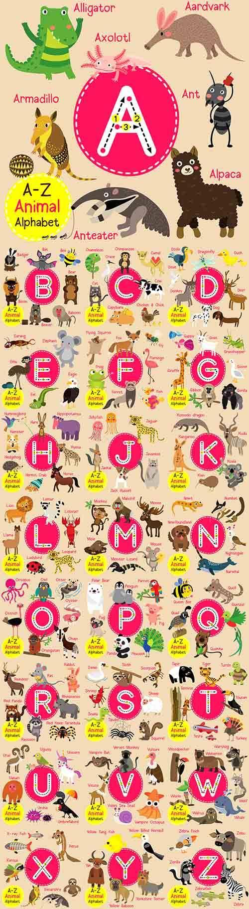 Английский алфавит в картинках - Векторный клипарт / English alphabet in pi ...