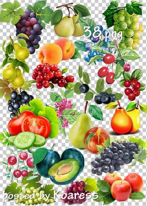 Овощи, фрукты, ягоды в png - Осенний урожай